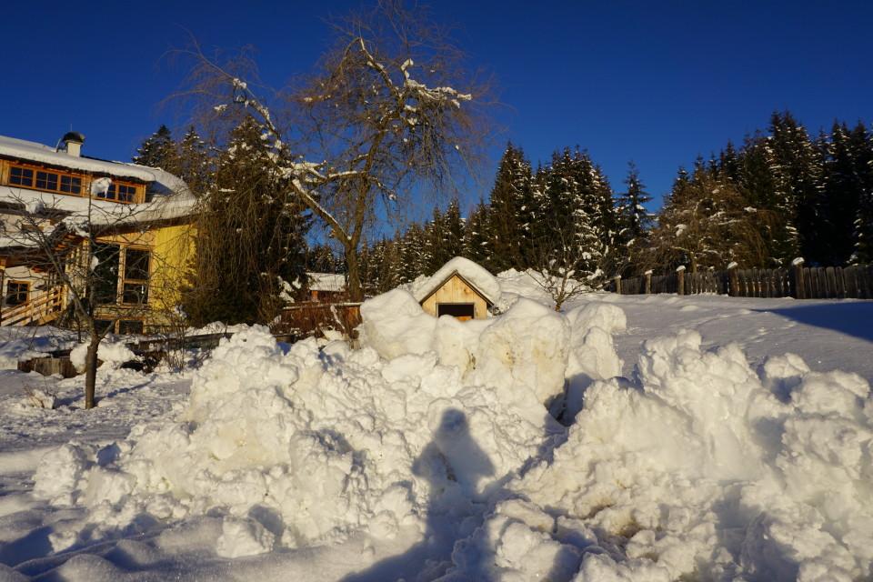 Entenvilla im Schnee