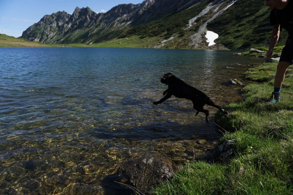 Sprung in den Oberhüttensee